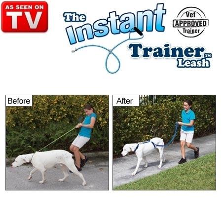 רצועת אילוף לכלב - רצועת פטנט ייחודית המאפשרת אימון ואילוף ...