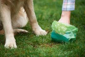 מתקן אישי דמוי עצם לאיסוף צואת כלבים + 3גלילי שקיות לשימוש...